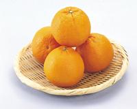 オレンジ 袋